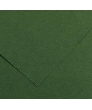Бумага цветная Iris Vivaldi 240г/м.кв 50*65см №31 Зеленый еловый , 200040384