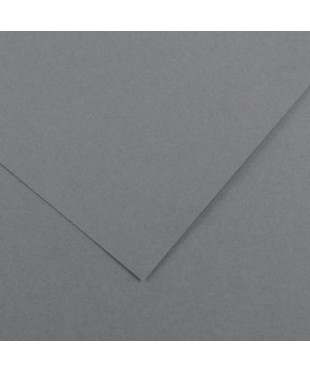 200040813 Бумага цветная Iris Vivaldi 240г/м.кв 21*29.7см №36 Серый темный