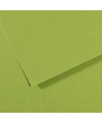 Бумага для пастели в листах Canson, серия Mi-Teines, цвет зеленое яблоко №475, размер 50х65 см, 160 гр/кв.м, 200321154