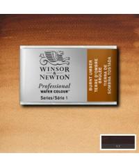 Акварель Winsor&Newton Artist's 0100076  Burnt umber, кювета