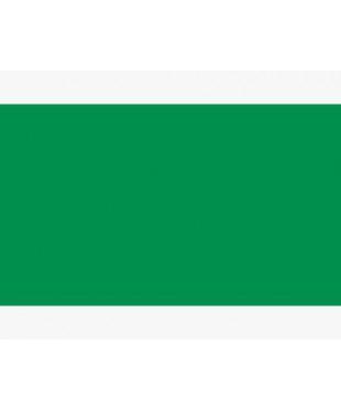 1911717 Белые ночи, зеленая светлая,  акварель кювета, ЗХК