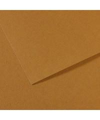 200321034 Бумага для пастели в листах Canson, серия Mi-Teines, цвет табачный, № 336, размер 50х65 см, 160 гр/кв.м