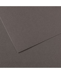 200321064 Бумага для пастели в листах Canson, серия Mi-Teines, цвет шифер, №345, размер 50х65 см, 160 гр/кв.м