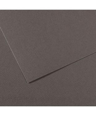 Бумага для пастели в листах Canson, серия Mi-Teines, цвет шифер, №345, размер 50х65 см, 160 гр/кв.м, 200321064