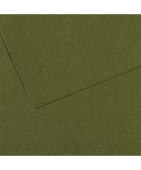 Бумага для пастели в листах Canson, серия Mi-Teines, цвет плющ, № 448, размер 50х65 см, 160 гр/кв.м, 200331454