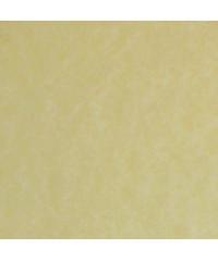 Паспарту № 1841N