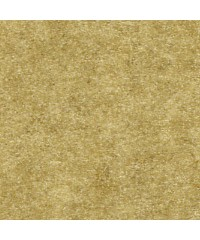 Паспарту № 301