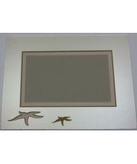 802601 Фигурное паспарту, набор, размер 28,5х38 см