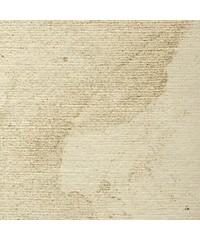 Паспарту № 963