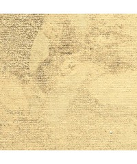 Паспарту № 968