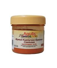 Agulis Pigments, Пигмент Мумия кирпично-красная Светлая, 50 гр