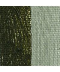820-208 Краска маслянная Antica Green Earth 50мл. РУБЛЕВ